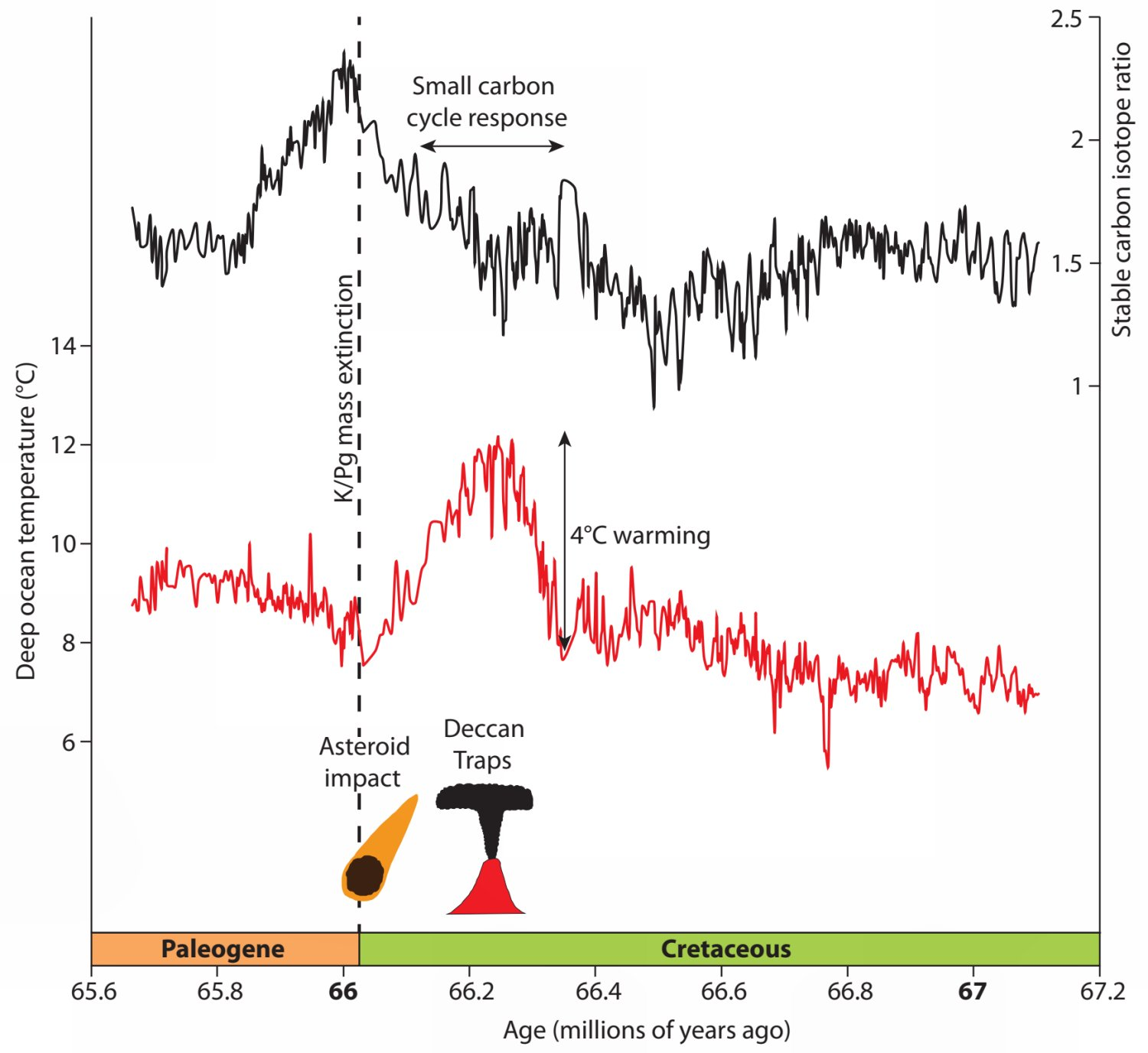 Stable carbon isotope and temperature records.