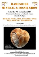 Hampshire Mineral & Fossil Show.